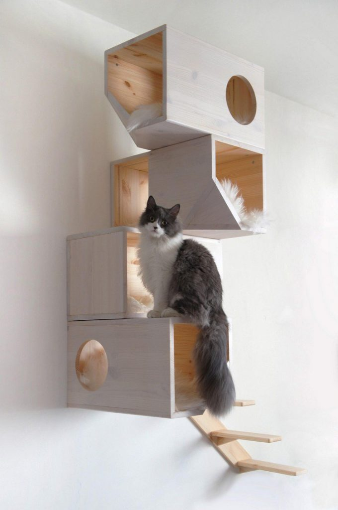 Chat qui escalade son arbre à chat mural DIY
