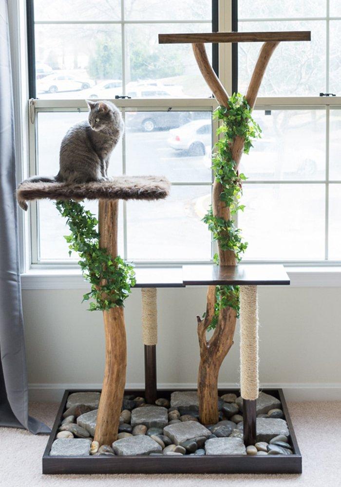 Chat installé sur son arbre à chat DIY réalisé avec du bois flotté