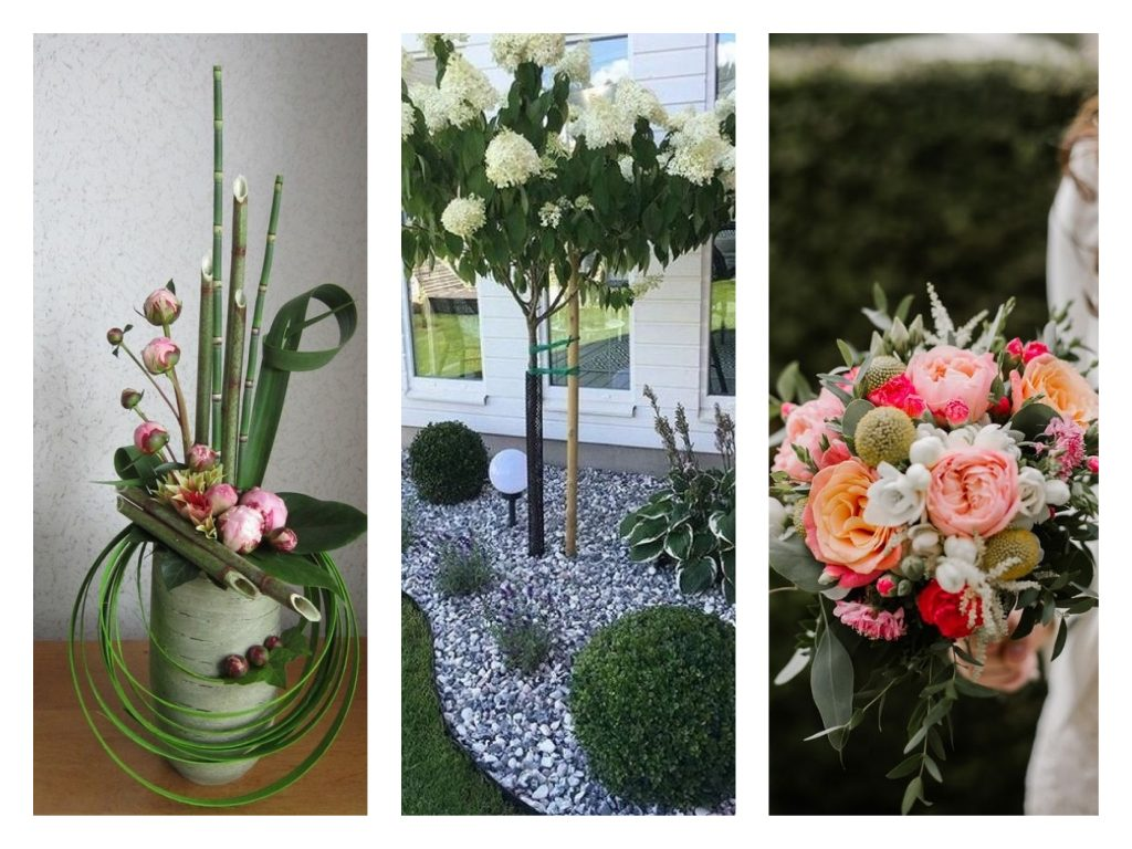Sélection de créations issues de l'art floral et du paysagisme